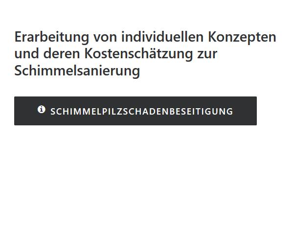 Schimmelpilzschadenbeseitigung für  Metzingen
